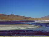 Laguna Colorada (Red Lagoon), Eduardo Avaroa Andean Fauna Nat'l Reserve, Bolivia Photographic Print by Simon Montgomery