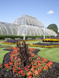 Palm House Parterre with Floral Display, Royal Botanic Gardens, UNESCO World Heritage Site, England Photographic Print by Adina Tovy
