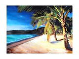 Beach at Magens Bay, St Thomas, USVI - I Premium Giclee Print by Markus Bleichner