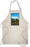 Steamboat Springs, CO - Mountain Bike Apron Apron