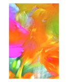 Color Blast Premium Giclee Print by Robin Sutliff