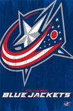 Columbus Blue Jackets Logo Print