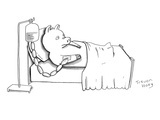 A pig is hooked up to an IV shaped like sausages, as he lies in a hospital… - New Yorker Cartoon Premium Giclee Print by Trevor Hoey