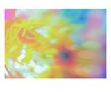 Sun Bubbles Premium Giclee Print by Robin Sutliff