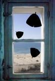 Les Feuilles de Ginkgo (Window Decal) Okenní nálepky