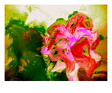 Flowers For You Premium Giclee Print by Robin Sutliff