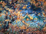 Yellow Heart Fotoprint van Ursula Abresch