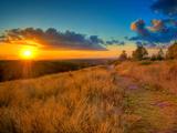 Sunset in the French Countryside Fotografisk trykk av Philippe Manguin