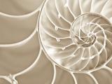 White Swirls Fotografisk tryk af Doug Chinnery