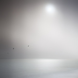 Doug Chinnery - Three Birds Xi - Fotografik Baskı