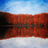 Red Forever Photographic Print by Philippe Sainte-Laudy