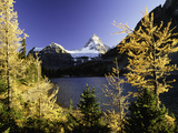 Snow Peak Photographic Print by Art Wolfe