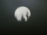gran huida, La|Dreamscape Lámina fotográfica por Art Wolfe