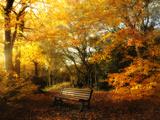 Philippe Manguin - Autumn Break Fotografická reprodukce