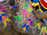 Festival of Colors I Photographic Print by Art Wolfe