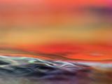 Firewater Photographic Print by Ursula Abresch