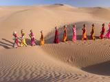 Desert Walk Fotografisk tryk af Art Wolfe