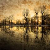 Ner djupt i smärtan Fotografiskt tryck av Philippe Sainte-Laudy