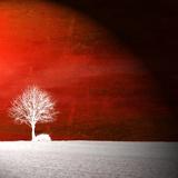 Sensação vermelha Impressão fotográfica por Philippe Sainte-Laudy
