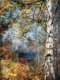 Ursula Abresch - Kootenay Fall Fotografická reprodukce