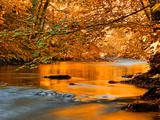 Il fiume dei sogni Stampa fotografica di Philippe Sainte-Laudy