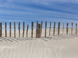 Fence on the Shore Photographic Print by Marco Carmassi