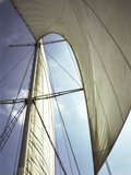 Sails Cathedral Photographic Print by Magda Indigo