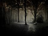 The Break Fotografie-Druck von Philippe Manguin