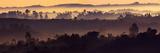 Misty Hills Fotodruck von Art Wolfe