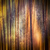 Herbstspaziergang Fotodruck von Ursula Abresch