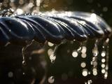 Un, dos, tres... splash Lámina fotográfica por Ursula Abresch