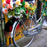 Dutch Flower-Power Bike Photographic Print by Magda Indigo