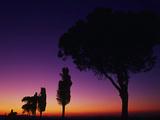 Nightfall Photographic Print by Art Wolfe