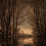 Talvimuisto 2 Valokuvavedos tekijänä Philippe Sainte-Laudy