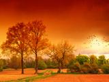 Orange World Fotografie-Druck von Philippe Sainte-Laudy