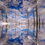 Traum in Blau Fotografie-Druck von Philippe Sainte-Laudy
