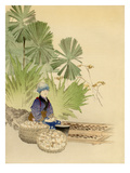 Transportation of Japanese Plants, Bulbs, etc Giclee Print by L. Boehmer & Co