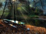 Autumn Lights Photographic Print by Nejdet Duzen