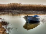 Peacefully Adrift Photographic Print by Nejdet Duzen