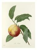La Pêche Giclee Print by  Langlois
