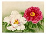 No. 35 Shuchiuka, No. 36 Fuyo-Ko Giclee Print