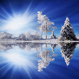 Cold Light Photographic Print by Philippe Sainte-Laudy
