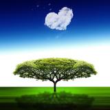 Nube de corazón  Lámina fotográfica por Philippe Sainte-Laudy