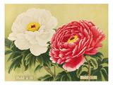 No. 29 Tama-Usagi and No. 30 Mikasayama Giclee Print