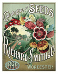 Catalogue of Seeds Giclee Print by Richard Smith & Co