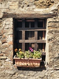 Small Window with Flowers Photographic Print by Marco Carmassi