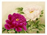 No. 19 Ruriban, No. 20 Saigyo-Zakura Giclee Print