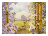 Wisteria Giclee Print by Edith Helena Adie