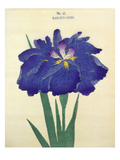 No. 42 Karako-Asobi Giclee Print