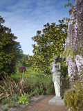 The Pan Statue Wisley Photographic Print by Carol Sheppard